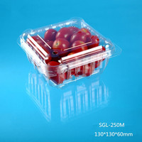 Square Plastic Container For Fruit Or
