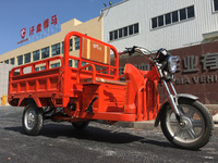 China heavy Loading cargo electric tricycle for adult