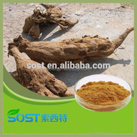 Best selling and hot sale pueraria mirifica extract powder with high quality