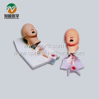 Child Tracheal Intubation Training Model