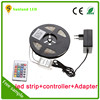 Addressable 36w waterproof ip65 smd5050 rgb led strip wifi controller