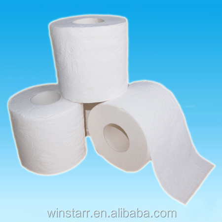 soft toilet roll