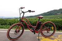 easy electric bike human transporter with lowrider parts