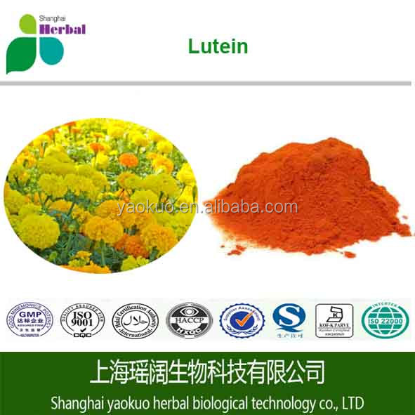 Top Quality Marigold Flower Extract 10% Lutein Powder Supply