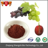 2016 Hot Sale Pure Natural Grape Seed Extract , Fruit Plant Extract Powder