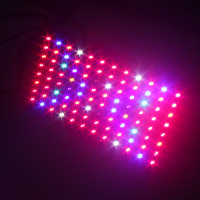200W Best Sell Led Grow Light Hydroponic Full Spectrum Led Grow Light Manufacturer FP200