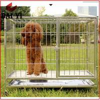 Anping Baiyi Supplier Sale Square Tube Strong Stainless Steel Cage For Large Dog