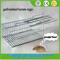 Hebei Professional trap mouse cage product factory