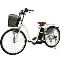 Classic Green Power Electric Bike