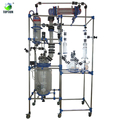 Jacketed Chemical Reactor