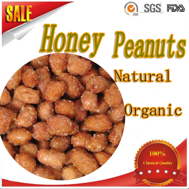 bulk buying health snack food honey roasted flour coated peanuts/fried groundnut