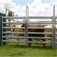 Cheap sheep fence panels / sheep gate hot sale