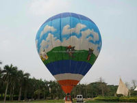 New design low price promotion hot air balloon