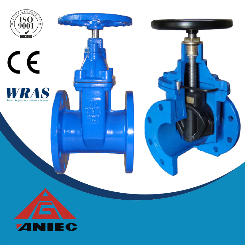 Ductile Cast Iron Flanged Gate Valve