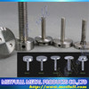 Wholesale Solid Stainless Steel Screw Decorative