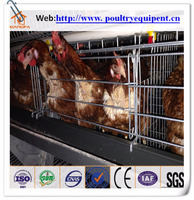 2016 Hot Sales chicken egg layer cage for Kenya
