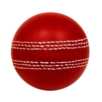 PU Foam Cricket Stress Ball