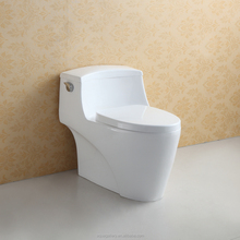 One Piece S-Trap Water Closet Single Flush Toilet