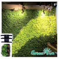 vertical garden hydroponic green living wall planter flower and plant wall shelf engineering equipment
