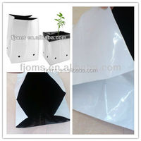 Excellent planter bags / fabric grow bags