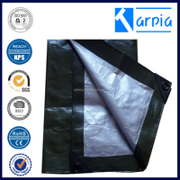 outdoor waterproof korea picnic pe tarpaulin sheet tarp tent