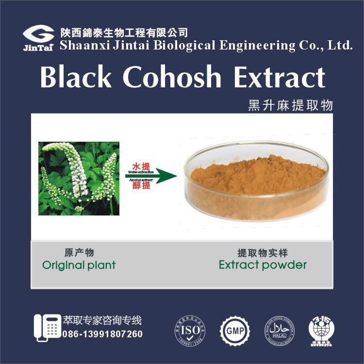 100% Pure Natural Black Cohosh Extract, Black Cohosh Extract Powder