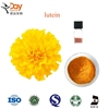 Marigold Flower Lutein Orange Yellow Extract Carotenoids Powder Food Colour Pigment Chickens Supplement