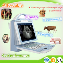 Portable Vet Ultrasound/Veterinary Products/ Ultrasonic Diagnostic Equipment for Animal ultrasound