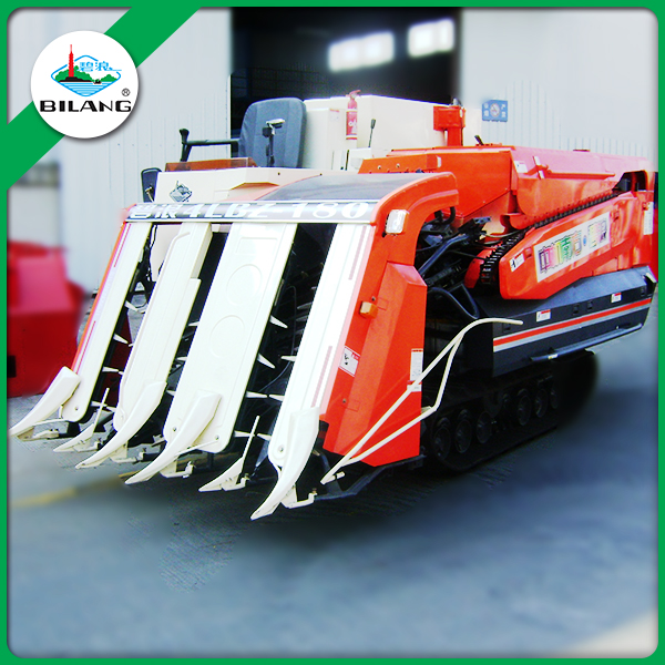 Price BILANG Semi feed grain 4 rows combine harvester for sale