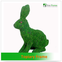 Topiary Plants For Home And Garden