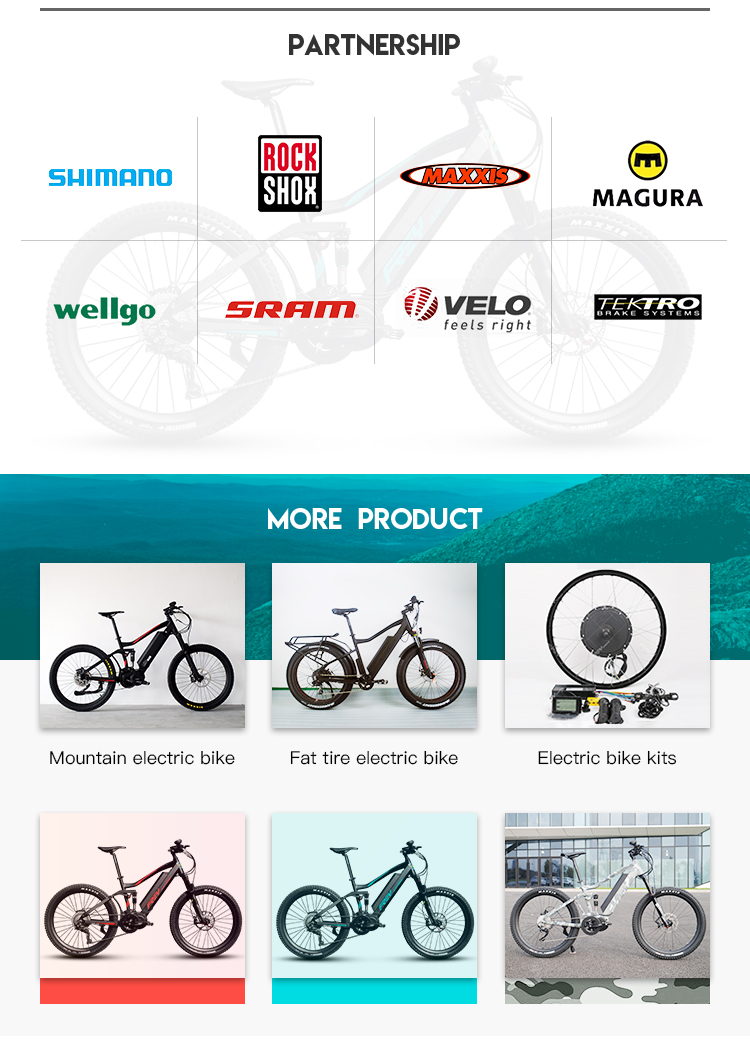 OEM/ODM 1000W Big Power Bafang Mid Drive Electric Bike