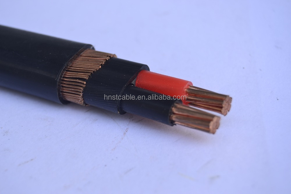 copper conductor XLPE/PVC Insulated concentric cable 3*8awg