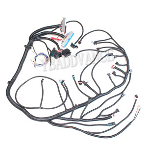 AAdvance LS1 GM Engine Wiring Harness 1999-02