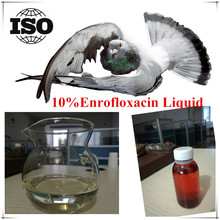 10%Enrofloxacin For flying Pigeons Bird Medicine
