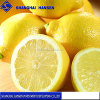 Import Agent Of Fresh South Africa Lemon fruit agents china trade agents