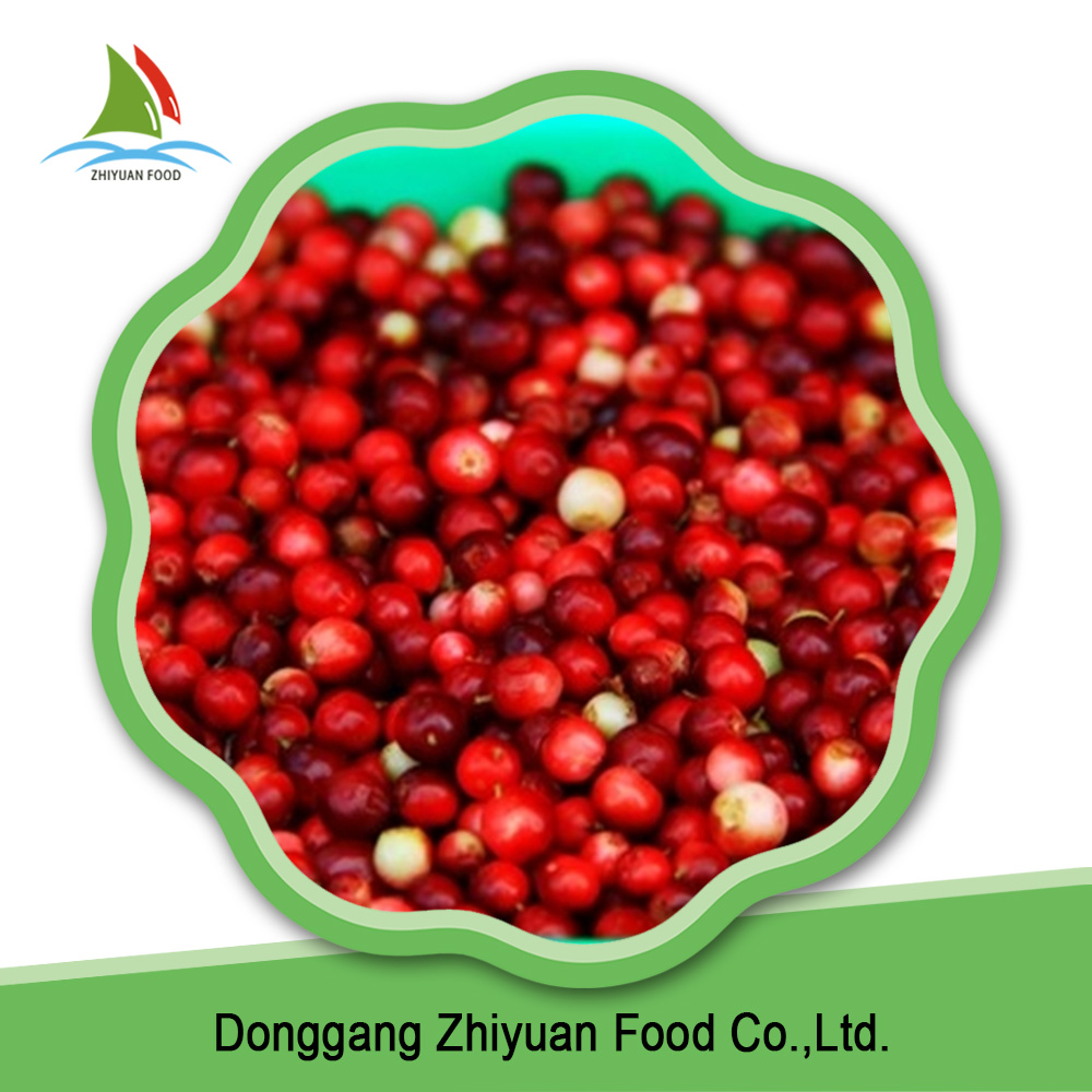 Top tated fresh fruit name iqf lingonberry for sale
