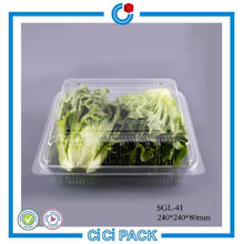 Spot Supply Waterproof Small Hinged Fruit Vegetable Plastic Box For Refrigerator