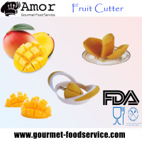 Commercial Hand Mango and Fruit Cutter
