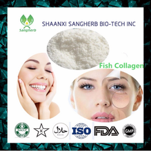 Trade Assurance Company Provide best salmon fish powder halal collagen/protein powder price