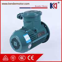 CE Approved Explosion Proof Electric Motor With Different Pole