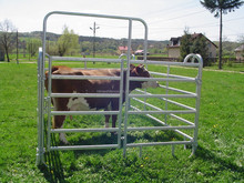 Loop Legged Tubular Galvanized Corral Cattle Panel with pins connect