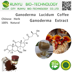 Reishi powder ganoderma lucidum extract ganoderma lucidum coffee