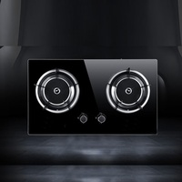 Ceramic two burner cooker infrared gas stove