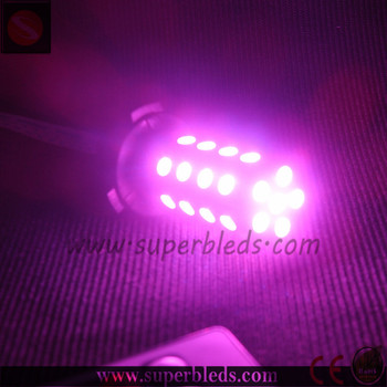 factory price led light Type and LED Lamp Type purple strobe light