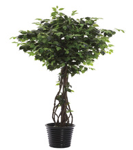new design garden products exotic and tropical bonsai artificial plant and flowers----0431