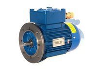 EEx d Electric Motor Explosion Proof / Flame Proof