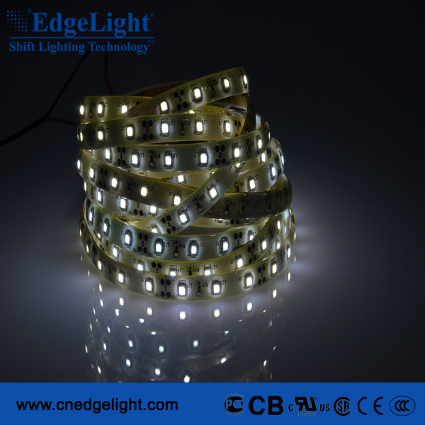 China Best Quality LED Supplier Waterproof 12V flexible LED light strip