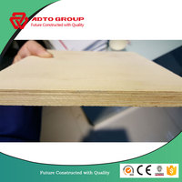 Durable Phenolic Waterproof Construction Film Faced