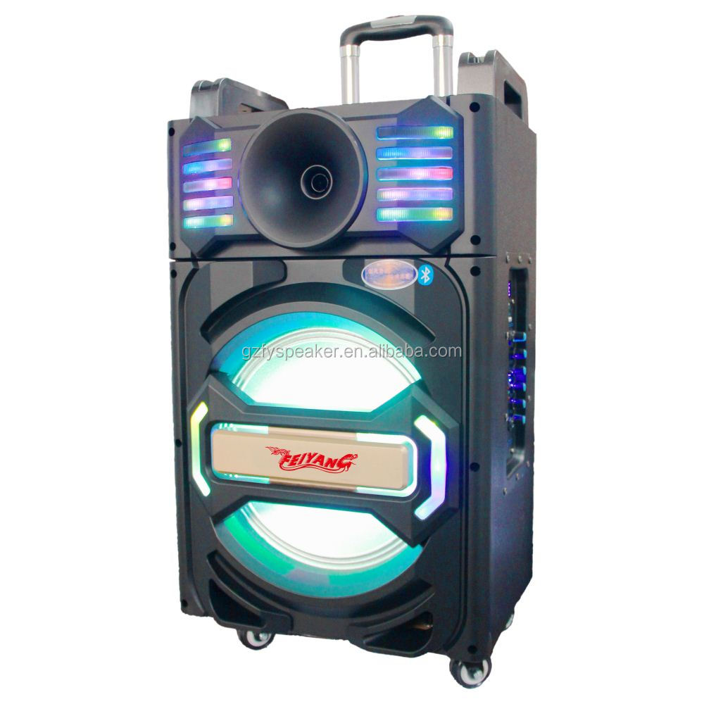 feiyang 12 inch trolley speaker with BT USB SD FM led light wireless microphone