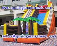 Factory Directly Supply High Quality Offer Inflatable Dry Slides SP-SL010